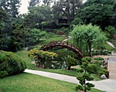 THE JAPANESE GARDEN AT THE HUNTINGTON BOTANICAL GARDENS  LOS ANGELES  CALIFORNIA.