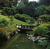 A WOODEN BRIDGE AND STREAM IN THE JAPANESE GARDEN AT THE HUNTINGTON BOTANICAL GARDENS  LOS ANGELES  CALIFORNIA.