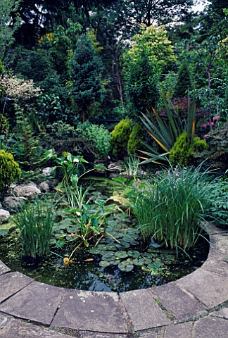 WATER_FEATURE_LUSH_PLANTING_SURROUNDS_SMALL_STONE_EDGED_CIRCULAR_POOLPOND_DESIGNER_C_CAPLIN