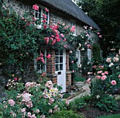 ASHTREE COTTAGE FRONT DOOR WITH ROSES PINK PERPETUAL  COMPASSION  SWAN LAKE & HANDEL (LTOR) REGALE LILIES(FG)