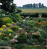 TOPIARY AND FORMAL SHAPES OF BUXUS SEMPERVIRENS AMONGST THE ABUNDANCE OF FLOWERS AT HERTERTON HOUSE NORTHUMBERLAND