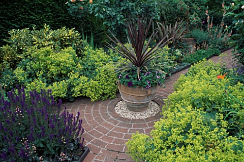 PHORMIUM_AURORA_IN_POT_SURROUNDED_BY_ALCHEMILLA_MOLLIS_DESIGNERLUCY_HUNTINGTON__MRS_DYMOCKS_GARDEN__
