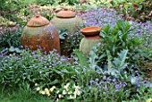 TERRACOTTA RHUBARB FORCING POTS NESTLE AMONGST FORGET-ME-NOT A THISTLE & HESPERIS MATRONALIS. GREYSTONE COTTAGE  OXON.