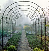 FROSTY MORNING: ARCHWAY OVER PATH IN THE POTAGER AT BARNSLEY HOUSE  GLOS.