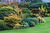 AUTUMN BORDER DOMINATED BY PHORMIUM TENAX VARIEGATA AND PHORMIUM CREAM DELIGHT.. LAKEMOUNT  GLANMIRE  EIRE