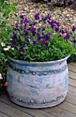 PURPLE VIOLAS IN CERAMIC CONTAINER BY EMMA LUSH IN THE SUN ALLIANCE/AMATEUR GARDENING GARDEN. CHELSEA 97