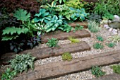 HOSTAS GROW BETWEEN RAILWAY SLEEPERS SET INTO GRAVEL IN THE LAMBETH HORTICULTURAL SOCIETY COURTYARD GARDEN.  CHELSEA 97