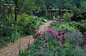 VIEW BACK FROM BLUE GARDEN ALONG GRAVEL PATH OF PEACH WALK. NEPETA SIX HILLS GIANT  ALLIUMS AND AQUILEGIAS. HADSPEN GARDENS  SOMERSET.