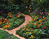 WOODEN PATH LEADS THROUGH MIXED BEDS OF HERBS  NASTURTIUMS  CALENDULAS  LETTUCES AND BEANS IN THE EDIBLE GARDEN AT CHELSEA 1994. DESIGNER: JULIE TOLL.