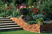 TERRACE BEDS WITH DAHLIAS AT EASTON LODGE GARDENS ESSEX