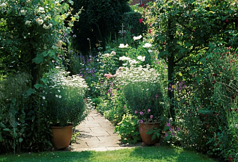 SHADY_ENTRANCE_TO_THE_ROSE_BORDER_FLANKED_BY_POTS_OF_ARGYRANTHEMUMS__LEADING_TO_SUNNY_PATH__SWINTON_