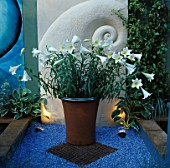 BOLDSTONE SCULPTURE BEHIND POT WITH WHITE LILIUM REGALE SET ON BLUE GRAVEL. DESIGNER: NAILA GREEN. CHELSEA 98