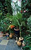 COURTYARD GARDEN: OLIVE JAR  CACTUS  PALM AND ORANGE LILIES IN POTS ON A TILED TERRACE. DESIGNERS: ANDREW AND KARLA NEWELL