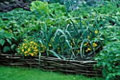 VEGETABLE GARDEN AT ROSENDAL  SWEDEN: RAISED WICKER BED WITH LEEKS AND OTHER VEGETABLES