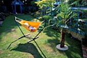 ROBERT RELAXES INSIDE THE ORANGE HAMMOCK BESIDE THE TRACHYCARPUS FORTUNEI. THE NICHOLS GARDEN  READING