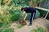 WATER FEATURE STEP-BY-STEP: LOUISE HAMPDEN DIGGING A HOLE IN THE GRAVEL