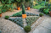 KNOT GARDEN WITH GRAVEL  PEBBLES  PURPLE SAGE  OREGANO  THYMUS SILVER POSIE AND BOX PYRAMID IN A TERRACOTTA POT IN THE CENTRE