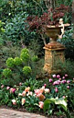 TULIPS AND EUPHORBIA FLOWER BESIDE AN ORNATE URN IN ROBERT CLARKS SAN FRANCISCO GARDEN