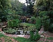 LARGE CIRCULAR POOL SURROUNDED BY LUSH PLANTING INCLUDING PHORMIUMS AND BRONZE FERTILITY GODDESS FOUNTAIN BY MICHELLE MUENNIG IN ROBERT CLARKS SAN FRANCISCO GARDEN