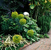 EUPHORBIA  CEANOTHUS  MELIANTHUS  DATURA AND A SILVER GAZING BALL IN A BORDER IN ROBERT CLARKS GARDEN  SAN FRANCISCO