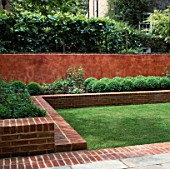 ZIG-ZAG OF RAISED BED WITH BOX BALLS BACKED BY ITALIAN POLISHED PLASTER WALL AND PLEACHED LIMES. MODERNISTS TOWN GARDEN.