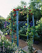 BLUE TIMBER AND METAL ARCHWAY WITH ROSA SCARLET AND ROSA FRANCOIS JURANVILLE  BEHIND IS A BOX EDGED BED WITH A SCARECROW AND CARDOON.  PET PLANS MR MCGREGORS GARDEN  CHELSEA