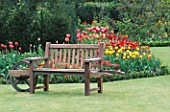 A PLACE TO SIT: WHEELBARROW SEAT IN FRONT OF ROSE BED UNDERPLANTED WITH TULIPA WILLIAM OF ORANGE  STRIPED BELLONA AND ELIZABETH ARDEN. THE ABBEY HOUSE  WILTSHIRE.