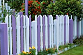 BLUE AND PURPLE TIMBER FENCING WITH MIXED TROPAEOLUMS IN BACKGROUND. GARDENING WHICH/ MET. POLICE A SAFE HAVEN. HAMPTON 1999.