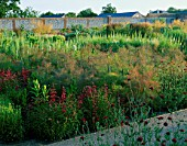 PERENNIAL PLANTING IN WALLED GARDEN BY CHRISTOPHER BRADLEY-HOLE: KNAUTIA MACEDONICA  FOENICULUM VULGARE PURPUREUM  EPILOBIUM ANGUSTIFOLIUM ALBUM  PENSTEMON FIREBIRD