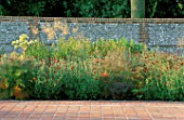 PERENNIAL PLANTING IN WALLED GARDEN BY CHRISTOPHER BRADLEY-HOLE: ANGELICA ARCHANGELICA  KNAUTIA MACEDONICA  STIPA GIGANTEA  FOENICULUM V. PURPUREA
