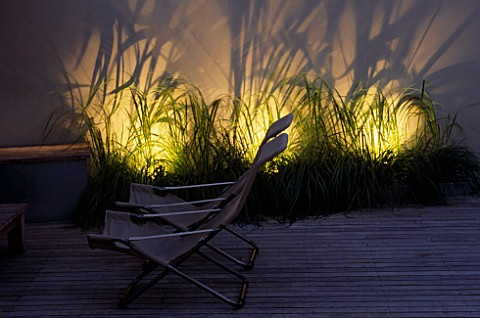 TIMBER_DECKING_AND_DECK_CHAIRS_WITH_THE_FOUNTAIN_GRASS__PENNISETUM_ALOPECUROIDES__BEHIND_LIT_UP_DESI