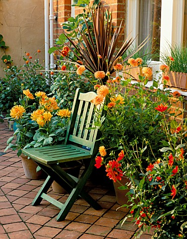 A_PLACE_TO_SIT_GREEN_WOODEN_CHAIR_WITH_CONTAINERS_ON_THE_TERRACOTTA_PATIO_PLANTED_WITH_CORDYLINE_AND