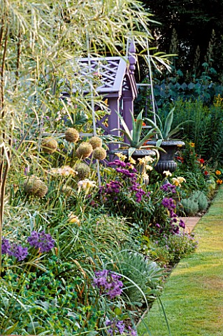 MAUVE_WOODEN_SEATWITH_SILVER_PAINTED_METAL_URNS_PLANTED_WITH_AGAVES_IN_BORDER_ARE_ALLIUM_GIGANTEUM__