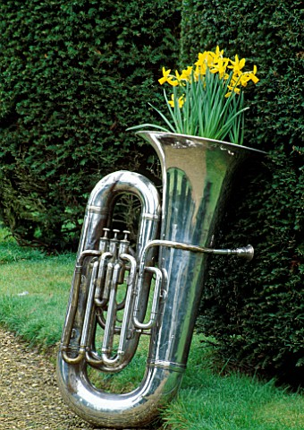 SILVER_TUBA_PLANTED_WITH_NARCISSUS_TETEATETE_DESIGNED_BY_IVAN_HICKS_GROOMBRIDGE_PLACE__KENT