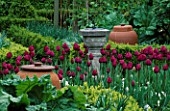 SUNDIAL  TERACOTTA RHUBARB FORCING POTS AND TULIP PINK IMPRESSION. LORD LEYCESTER HOSPITAL GARDEN  WARWICK