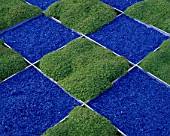 CHEQUERBOARD DESIGN WITH THYMES AND BLUE GLASS GRAVEL. BARTS CITY LIFESAVERS CHAOS & RHYTHM GARDEN DESIGNED BY DR. CLAIRE WHITEHOUSE. CHELSEA 2000