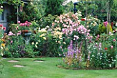 CAROLYN HUBBLES GARDEN  SHROPSHIRE: LAWN AND BORDERS BURSTING WITH ROSES