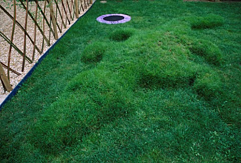 MINI_TRAMPOLINE_IN_GRASS_NEXT_TO_TURF_CROCODILE_DESIGNED_BY_CLARE_MATTHEWS