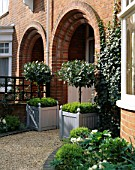 WHITE AND SILVER FRONT GARDEN WITH CLIPPED BAY TREES IN SILVER VERSAILLES TUBS WITH DWARF BOX  BOX BALLKS  GRAVEL PATH AND IVY