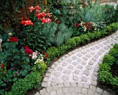 CURVING PATH WITH BRICK SETTS AND PINK GRAVEL MULCH SURROUNDED BY BOX BALLS  RED LILIES   ROSES AND NICOTIANA. DESIGNER ANDREW ANDERSON