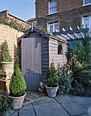 ORNATE SHED PAINTED GREY WITH BO BALL  CORDYLINE LYCHNIS CORONARIA  TRACHYCARPUS AND BAMBOO FENCE. DESIGNER: ANDREW ANDERSON