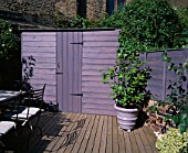 GARDEN WITH DECKING DESIGNED BY JOE SWIFT/ THAMASIN MARSH:  LILAC/GREY SHED AND CONTAINER WITH CAMELLIA. STONE TOPPED TABLE AND CHAIRS TO THE LEFT