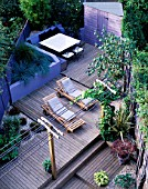 VIEW OF SPLIT LEVEL GARDEN. DESIGN: JOE SWIFT AND THAMASIN MARSH: PERGOLA WITH VINE  SUN LOUNGERS  DECKING  SHED  RAISED BED WITH BLUE GRASSES  SHELL MULCH  HOSTA AND MAPLE IN POTS