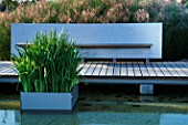 FOLIAGE OF IRIS ENSATA IN GALVANISED CONTAINER SITS IN POND IN MINIMALIST WATER GARDEN   DESIGNED BY ULF NORDFJELL. MODERN BENCH AND DECKING.  HEDENS LUSTGARD  SWEDEN