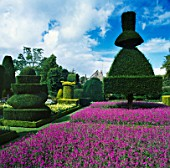 THE TOPIARY GARDEN AT LEVENS HALL  CUMBRIA