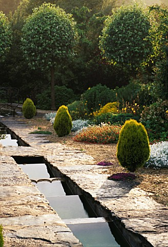 THE_RILL_AT_EASTLEACH_HOUSE__GLOUCESTERSHIRE_THUJA_ORIENTALIS_AUREA_NANA_AND_SORBUS_ARIA_LUTESCENS