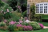 LAUNA SLATTERS GARDEN  OXFORDSHIRE: PINK BORDER BESIDE THE HOUSE WITH PHUOPSIS STYLOSA  HEBE RAKENS  VERBASCUM CHIAXII ALBUM  ROSE QUEEN ELIZABETH  POPPIES  ALLIUM CHRISTOPHII