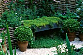 MEDIAEVAL APOTHECARYS GARDEN WITH WICKER SCREEN  THYME SEAT  BOX BALLS IN POTS  FOXGLOVES AND CRUSHED SHELL MULCH. CHELSEA 2001  BRIGHTSTONE & DISTRICT HORTICULTURAL SOCIETY