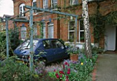 FRONT GARDEN: TULIPS  FORGET-ME-NOTS AND CAR IN CARPORT.   DESIGNER: LISETTE PLEASANCE
