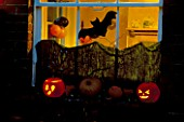 HALLOWEEN: WINDOWSILL DECORATED WITH GOURDS  PUMPKINS  TWISTED WILLOW STICKS  STARS  A BAT  AND BLACK CARD.  DESIGNER: CLARE MATTHEWS